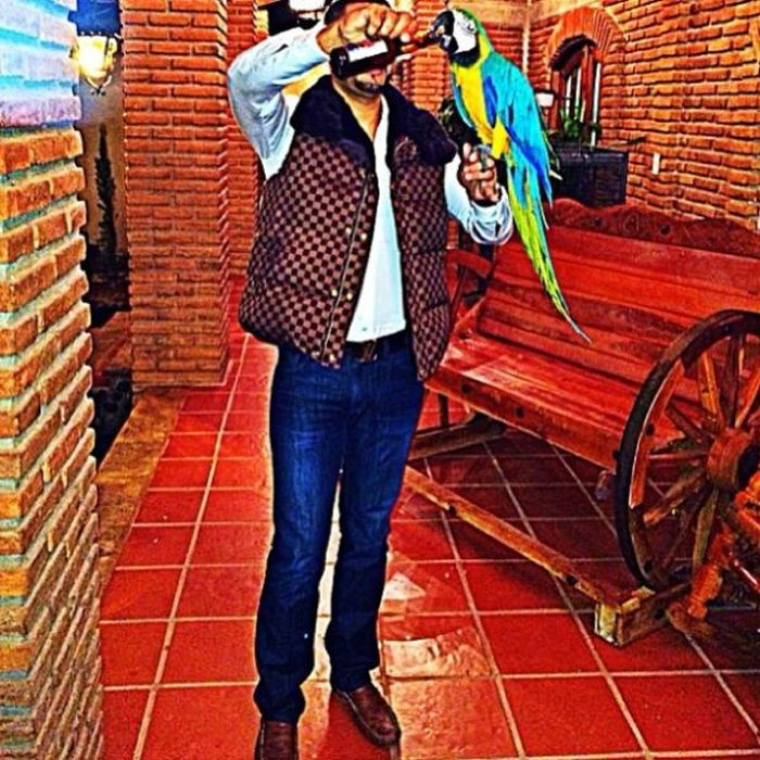el chino anthrax with his parrot on instagram